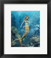 Framed Clown Fish Kiss