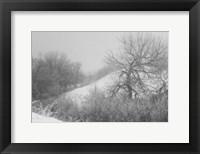 Framed Winter Snow And Brush I