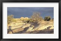 Framed Canyonland 14