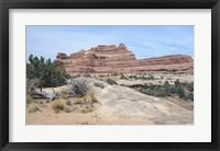 Framed Canyonland 21