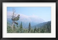 Framed Glacier National Park 19