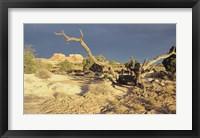 Framed Canyonland 13