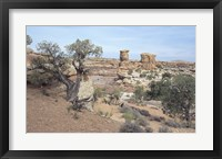 Framed Canyonland 8