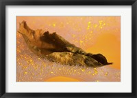 Yellow Fall Leaf Floating In Bubbles II Framed Print