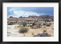 Framed Canyonland 7
