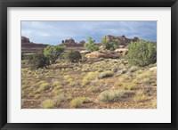 Framed Canyonland 15