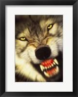 Framed Wolf Motion
