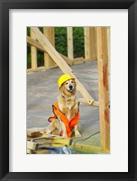 Canine Construction I Framed Print