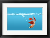 Framed Goldfish Gone Swimming I