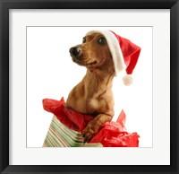 Framed Santa's Puppy Gift