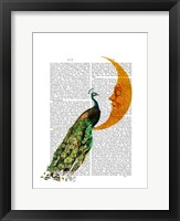 Peacock on the Moon Framed Print