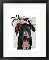 Black Labrador With Green Fascinator Framed Print