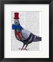 London Pigeon Framed Print