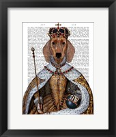 Dachshund Queen Framed Print