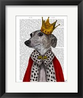 Greyhound Queen Framed Print