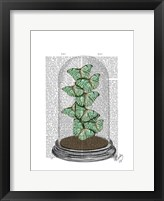 Green Butterflies in Bell Jar Framed Print