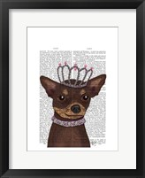 Brown Chihuahua And Tiara Framed Print