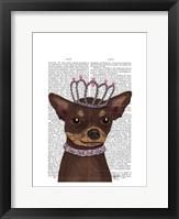 Brown Chihuahua And Tiara Framed Print