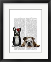 French Bulldog and English Bulldog Framed Print