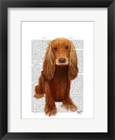 Framed Cocker Spaniel Plain