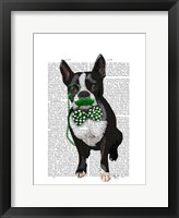 Framed Boston Terrier With Green Moustache And Spotty Green Bow Tie