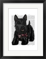Scottish Terrier and Bow Framed Print