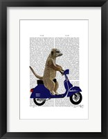 Meerkat on Dark Blue Moped Framed Print