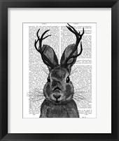 Jackalope with Grey Antlers Framed Print
