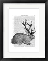 Jackalope Portrait 1 Framed Print