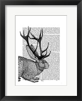Jackalope Portrait 2 Framed Print