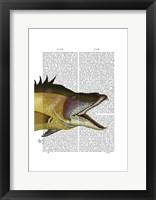 Great Hog Fish Framed Print