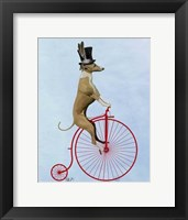 Greyhound on Red Penny Farthing Framed Print