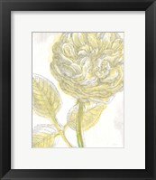 Belle Fleur Yellow III Crop Framed Print