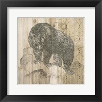 Natural History Lodge IV Framed Print