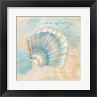 Watercolor Shell Sentiments I Framed Print
