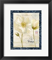 Paris Poppies w/Navy Border II Framed Print