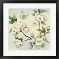 Cherry Bloom I Framed Print