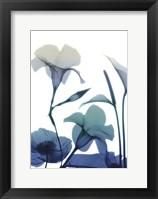 Framed Morning Bloom 1