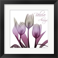 Framed Ombre Tulips