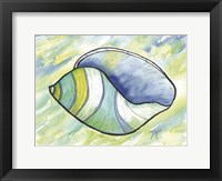 Framed Underwater Shell 2