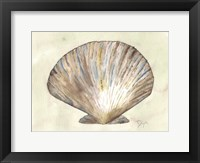 Framed Sea Shells Neutral 2
