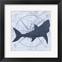 Framed Shark 9