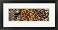 Framed Animal Prints
