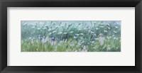 Framed Wild Flowers 03