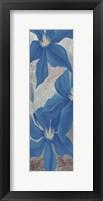 Framed Blue Clematis Cavees I