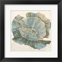Framed Sapphire Bloom 2