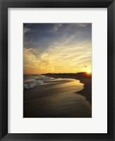 Framed Seagull Flying Into Beach Sunset