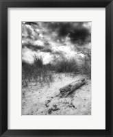 Framed Wood Beach Sky BW