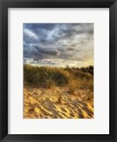 Framed Dune Grass and Sky