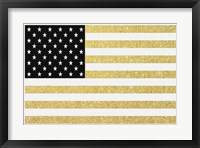 Gold Flag 1 Framed Print